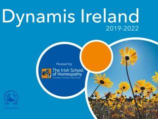 dynamis ireland 2019-2022